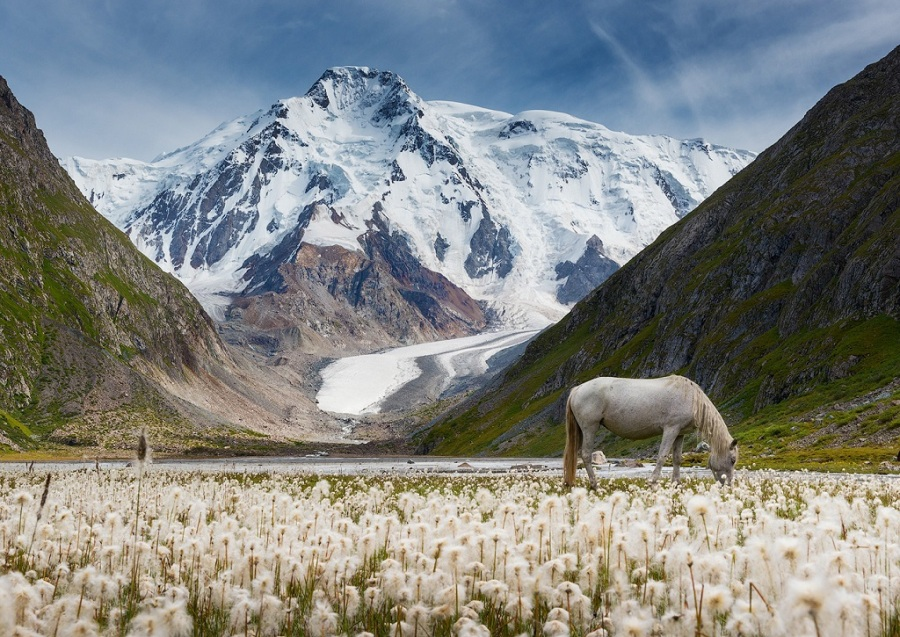 Qırğızıstan, Qaraqol zirvəsi